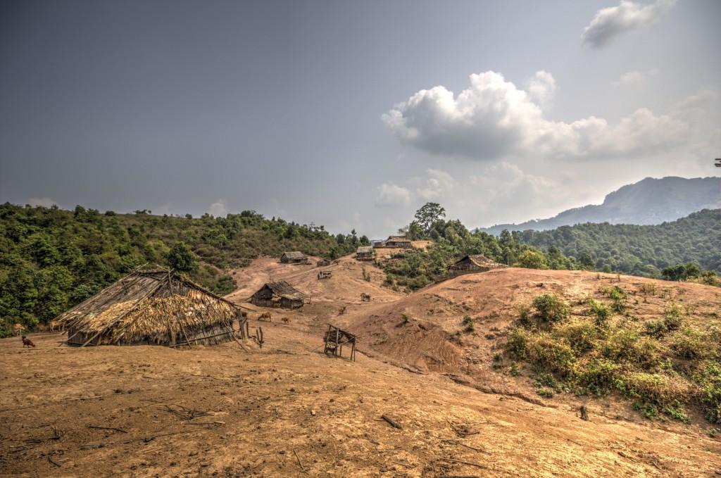 Trekking v Laosu. Vasica v bližini mesta Luang Namtha.