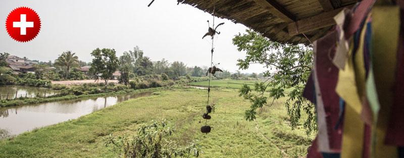 Razgled iz najinega guesthousa v mestu Chiang Khong na reko in Laos. V prispevku pa vse informacije kako priti iz Tajske v Laos.