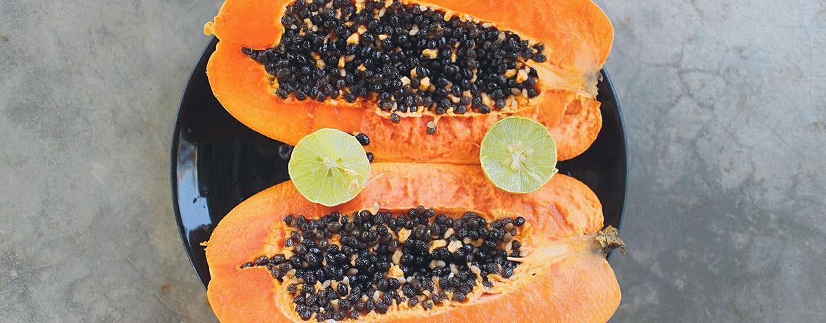 top-papaja
