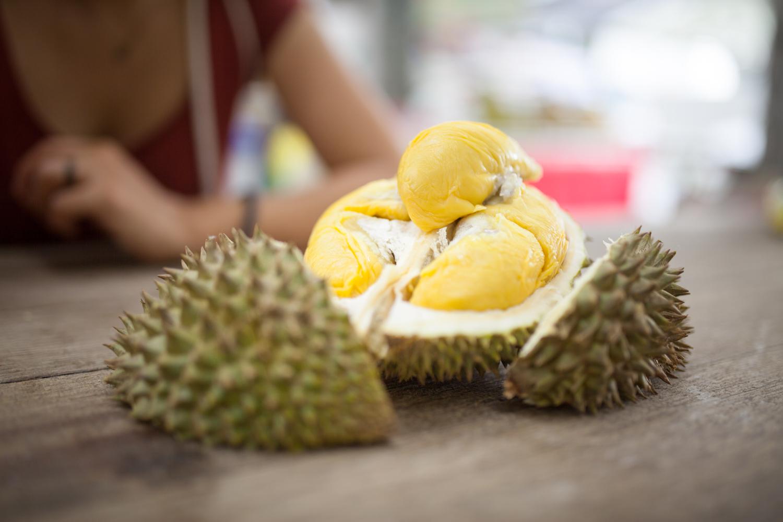 Sadež durian, Malezija