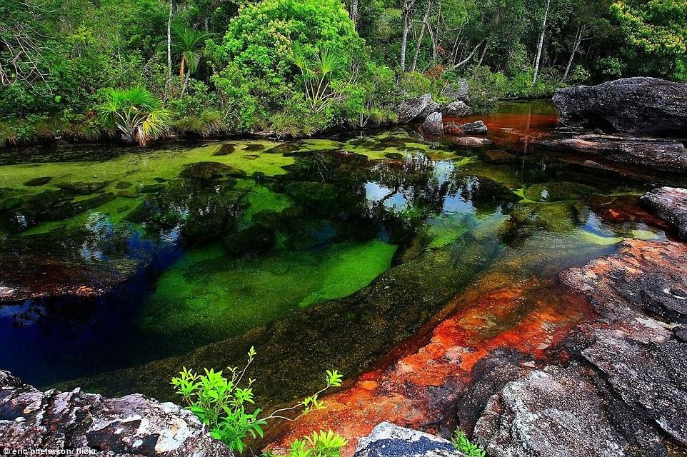 Mavrična reka, Kolumbija